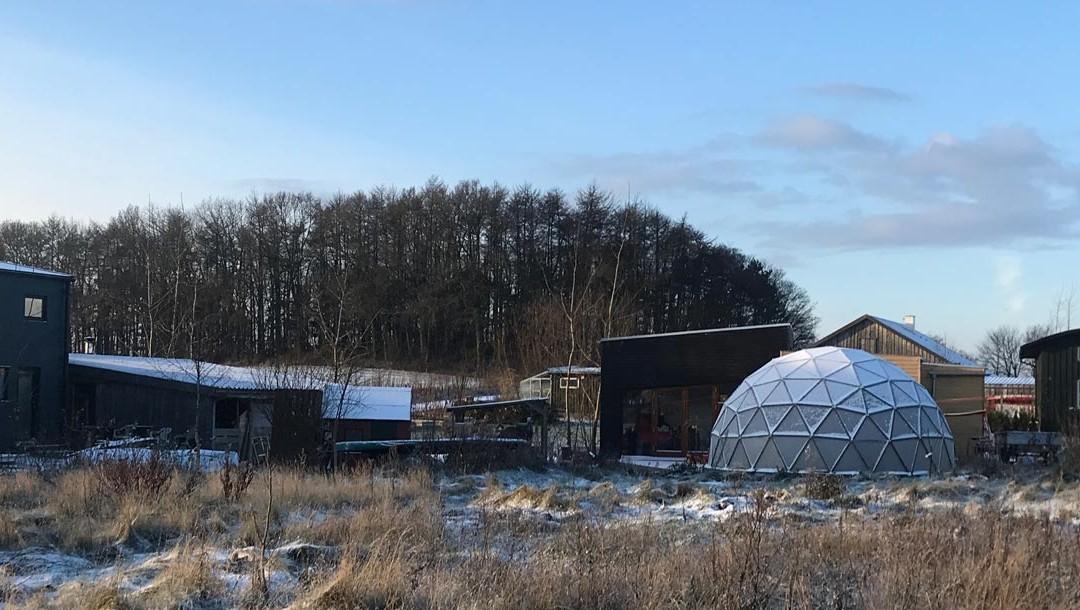 Friland i sneen – status efter 6 måneder på Friland